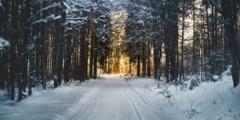5 tips om met jouw organisatie de winter door te komen!