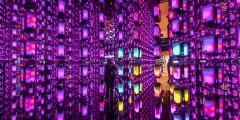 De kunst afkijken bij 's werelds beste evenementen van 2019