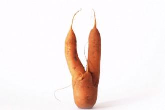 Duurzame catering lastig? Nee hoor: 3+10 tips