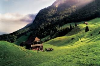 5 Teamactiviteiten in Zwitserland